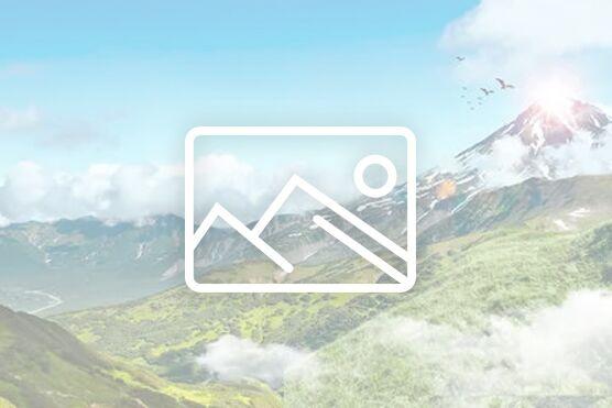 王红漫:远程医疗一点通 e网打尽全世界